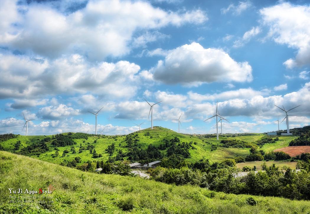 풍력발전소...