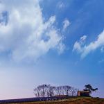 농촌의 풍경