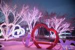 청도 프로방스 빛 축제, 예쁜 동화마을에서 즐기는 한 겨울 데이트