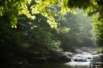 순창 강천산 단풍은? 깊어가는 가을을 느끼며 걷는 계곡길