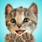 유아게임:: 내가 가장 좋아하는, 귀여운 새끼고양이(Little Kitten) 모바일 게임!