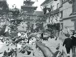 네팔 카투만두 여행: 덜발광장의 비둘기