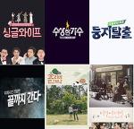 월화.수목.금토.주말. 요일별 예능.시사.다큐 2017년 6월 업데이트