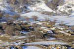 목장의 겨울