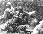 한국전쟁 65주년을 즈음하여-끝나지 않는 전쟁