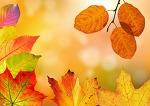 예쁜 사진 배경화면 낙엽, 풍선, 선물 사진