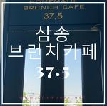 일산 삼송  동산동 브런치 카페 37.5 솔직후기