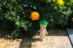 170829 후쿠오카 福岡 Fukuoka 여행 -2 오호리공원 大濠公園, 스타벅스 starbucks, 라 브리오슈 la brioche