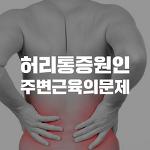 강남세란의원 허리통증 완화 운동