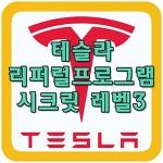 테슬라 리퍼럴 프로그램 시크릿 레벨3 공개