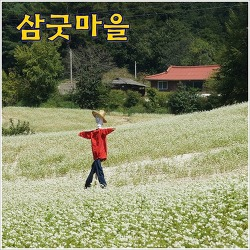 [영월농촌체험마을] 삼굿마을 - 전통의 향기를 간직한 정보화마을
