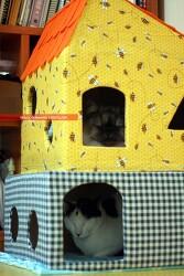 고양이 집 만들기 땅콩집 못지 않은 정성이 필요했던 고양이 집