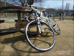 자전거 탄 풍경