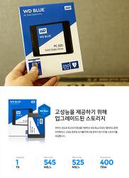 WD Bluse SSD 250GB WD Green SSD와의 성능 차이점