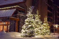 캐나다 밴프여행, 낮과 밤 모두 아름다운 밴프 다운타운 나들이~