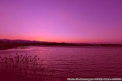 (강릉여행) 노을이 아름다운 경포호