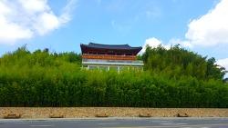 '한국관광지 100선'에 선정된, 담양 '죽녹원'에 다녀왔습니다.
