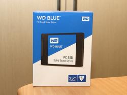WD Blue SSD 250GB 성능 벤치마크 SSD 추천
