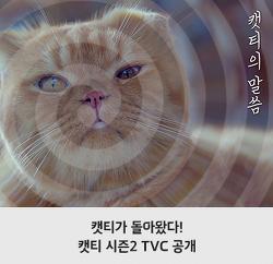 캣티가 시즌2로 돌아왔다! 캣티의 말씀 TV CF 공개