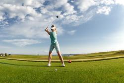 [골프스윙] 다시 짚고 넘어가는 골프의 기본!