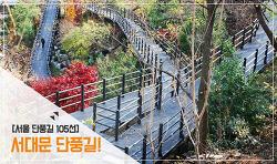 서울 단풍길 105선, 산책길에서 만나는 단풍길 in 서대문 1탄!