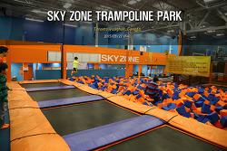 토론토 스카이존 Sky zone (2015.03.27)