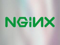 리눅스 CentOS - nginx 기동 오류