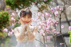 운현궁의 봄