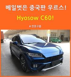 베일벗은 중국산 우르스! Hyosow C60!