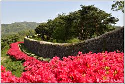 전북 고창 고창읍성