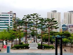 마산역 앞 풍경