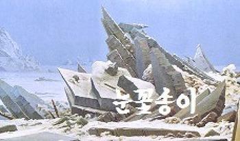 1227. 눈꽃송이 (초안)