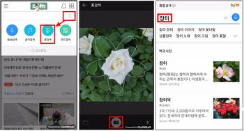 사진을 찍으면 꽃이름을 알려 주는 다음(DAUM)어플