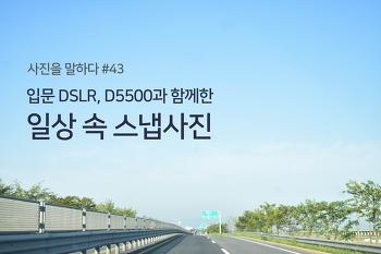 [사진을 말하다_D5500] #43. 입문 DSLR, D5500과 함께한 일상 속 스냅사진