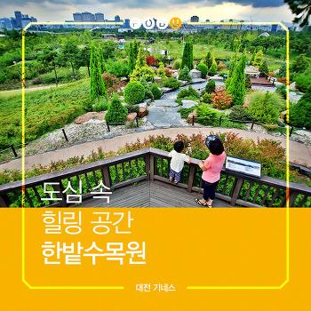 대전기네스북(18)도심 속 힐링 공간 한밭수목원