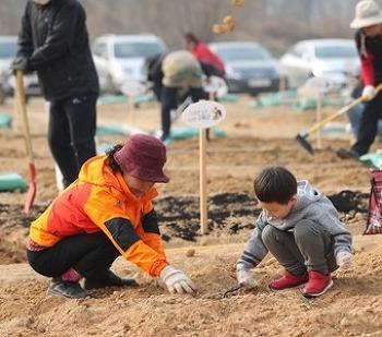 시민들이 함께 가꾸는 힐링 공간! '행복텃밭 1호점'