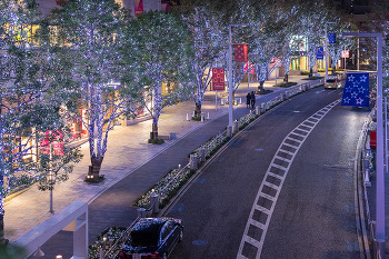 빛이 내린 도쿄의 거리를 걷다. 도쿄여행 롯폰기 힐즈 일루미네이션