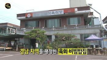 생활의달인 사천 육회 비빔밥의 달인 - 경남 사천시 곤명면 정곡리 완산진남식육식당