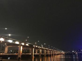 반포대교 한강 달빛무지개분수, 밤도깨비 둘 다 못 봤다.