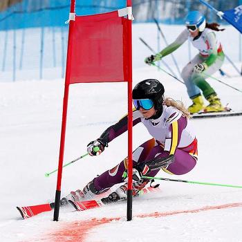 2018 평창동계올림픽, 새로운 종목 6가지 파헤치기