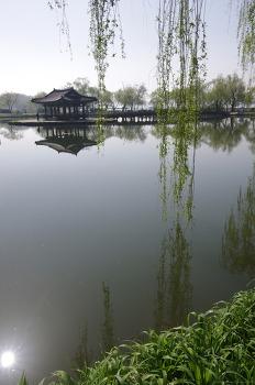 궁남지 (2018봄) 충남 부여군 부여읍 동남리
