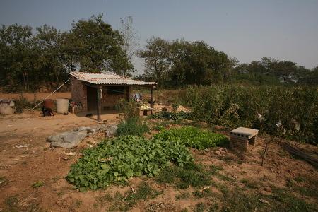 민족반역자 연남생의 무덤을 찾은 까닭