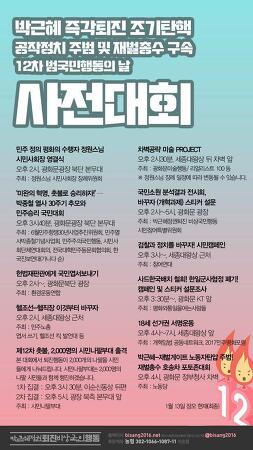박근혜퇴진비상국민행동 - 제12차 범국민행동의 날