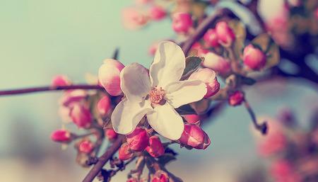 추운 겨울이 가고, 설레는 봄 in 세빛