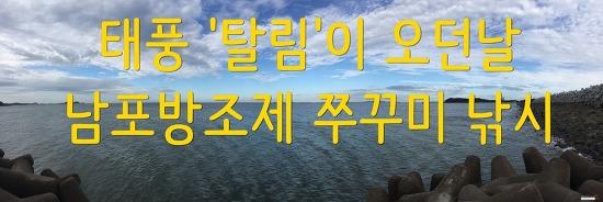 태풍 '탈림'이 지나가던날 쭈꾸미낚시-남포방조제 (1)