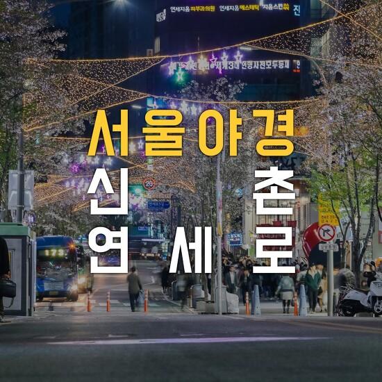 [나이트뷰 - 서울야경, 신촌야경] 벚꽃이 만개했었던 화려한 신촌 연세로의 밤풍경~!