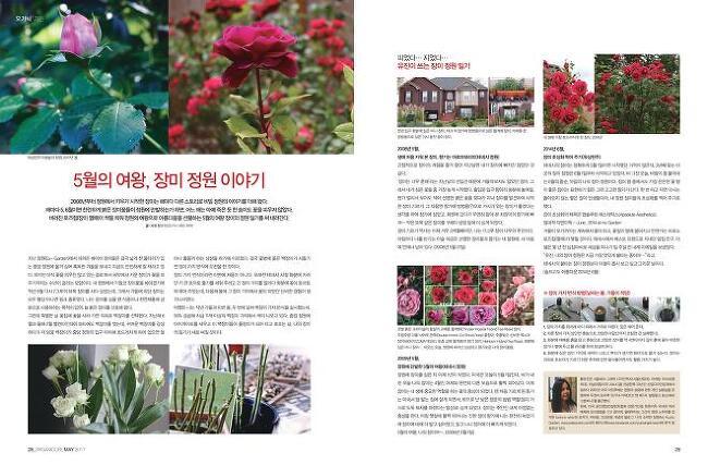 5월호 여성잡지 퀸 기고글: 장미의 계절 그냥..