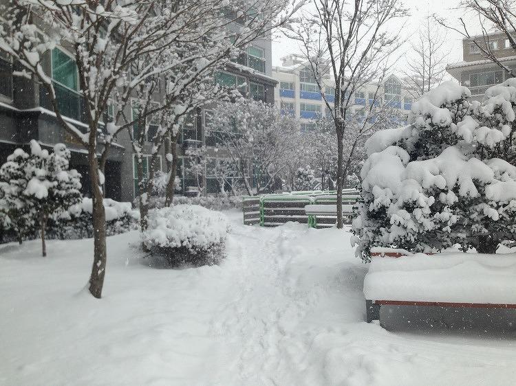 2016년1월24일 광주 폭설, 하염없이 내리던 눈, 송정리역 함박눈 풍경, 눈사람