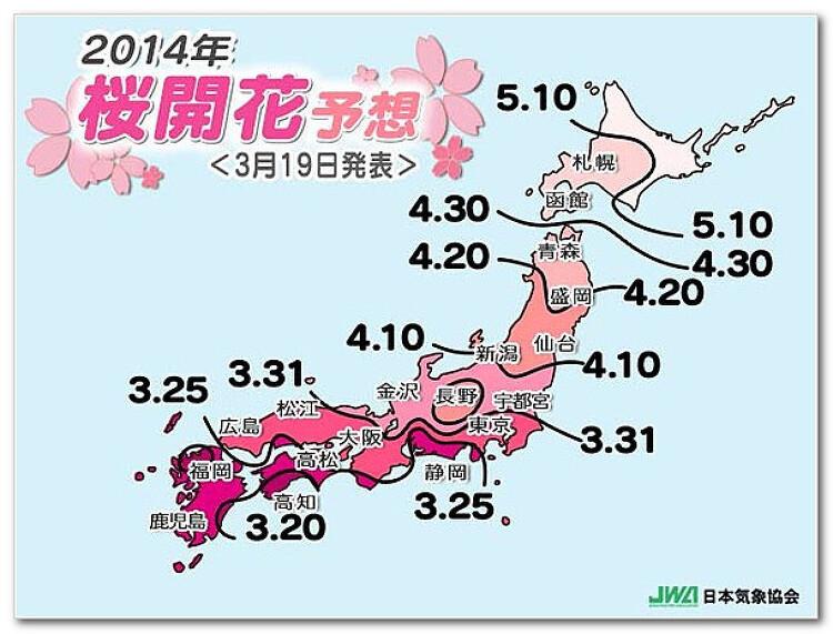 2014년 일본 벚꽃 개화 예상