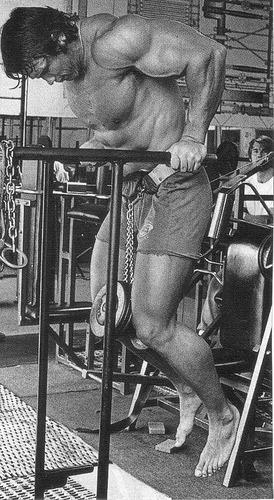 가슴 근육을 크게 키우고 싶다면 중량 딥은 좋은 운동이겠죠